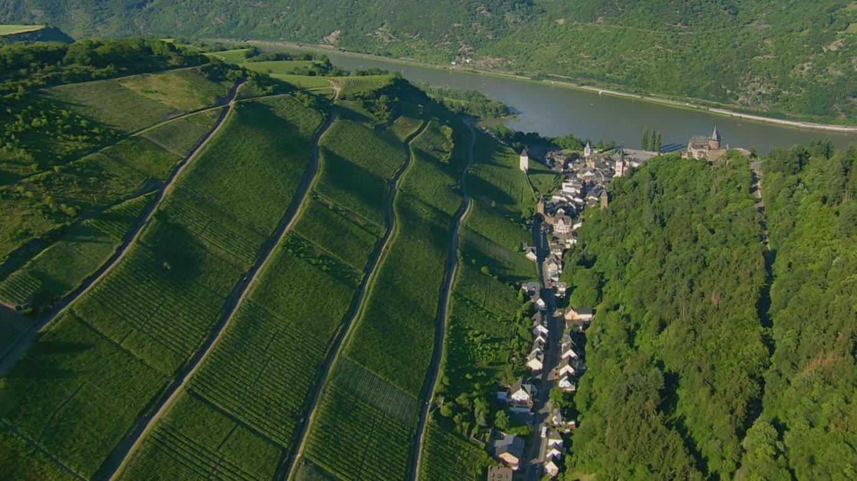 Rheingold - Fluss