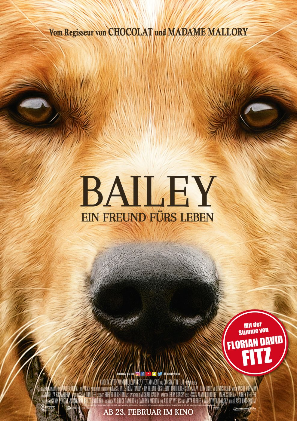 film bailey